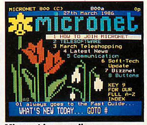 micronet 800 prestel